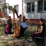 Kardamon Trio na Odrębnej